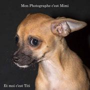 Titi à Mimi