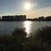 Rhein bei Wittlaer