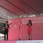 靖国神社 さくらまつり開催中 バイオリン演奏