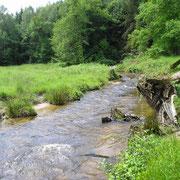L'Alembre en amont du pont Jean Ségurel