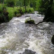L'Alembre en amont du barrage EDF