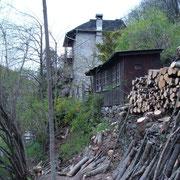 Taglio piante e allestimento legname