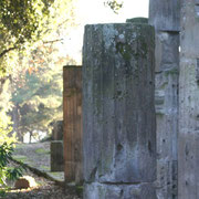 (1288) Pompei