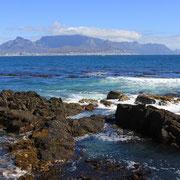 (6526) Vue depuis Robben Island