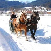 Über verschneite Feldwege...