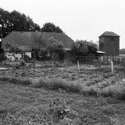 Baumschule in Dreilingen sieht noch aus wir ein normaler Garten