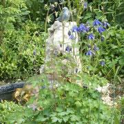 Der Gartenteich wird jeden Tag von Vögeln besucht.