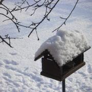 Unser viel besuchtes und von uns oft beobachtetes Vogelhaus