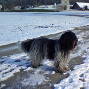 Winter 2010, Rina