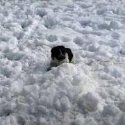 Dieser Schnee gehört nur mir . . .