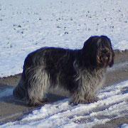 Winter 2010, Djinie