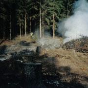 Waldbrand am Hirschteich in Albertsberg                                                  Foto: B.Seidel