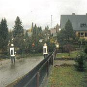 Baum auf Straße in Vogelsgrün - Siedlungsstraße                                                 Foto: B.Seidel