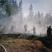 Waldbrand in Vogelsgrün- im Einsatz war Vogelsgrün, Auerbach und Beerheide                                                    Foto: B.Seidel
