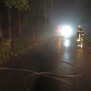 Die Stromleitung wurde durch einen Baum heruntergerissen.