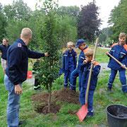 Die Jugendfeuerwehr bekam vom Ortschaftsrat, anläßlich ihres Jubiläums, ein Baum geschenkt.