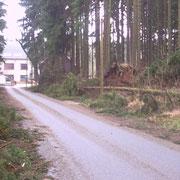 die Zufahrt zum Waldpark Grünheide, während des Sturmes waren die Ortschaften Albertsberg, Carolagrün und Grünhiede von der Außenwelt abgeschnitten                                             Foto: B.Seidel