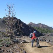 im Hintergrund der ca. 2000m hohe Hoyo Negro