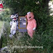 Les mascottes veulent se faire prendre en photo