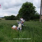 Les mascottes retrouvent l'herbe