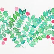 「赤いバラ」 Watercolor. 2015 Private collection.