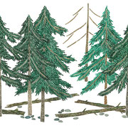 「森の中」 Watercolor. 2019