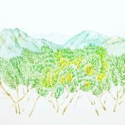 「這松と山脈」  Watercolor. 2016