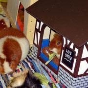 Traudl und Josi halten weniger von solchen Maskottchen und widmen sich wieder ihrer Lieblingsbeschäftigung: dem Fressen!