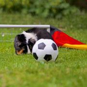 """Komm nur näher, Ball! An mir als Tormann-Schweinchen kommste nicht vorbei!"""