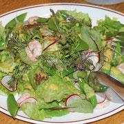 小エビの野菜サラダ