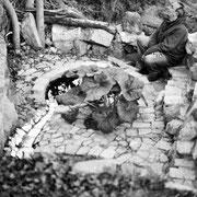 Pablo Sanguino en el Jardín de Onuma junto al Tajo