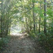environnement nature et randonnée gite rural Saint Quentin Aisne Laon Noyon Compiegne Peronne