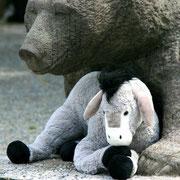 Ausruhen mit den Berner Bären