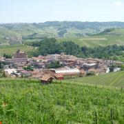 美しいブドウ畑に囲まれるバローロの町