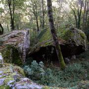 Blocs de granite bien dégagés - versant de la vallée du Lignon