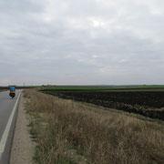 Weite Felder, kaum Gewerbe oder gar Industrie kurz vor der Grenze Bulgarien/Griechenland