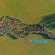 Luftaufnahme Lebender Bodensee beim Überlingen-Tag der Landesgartenschau Lahr am 14.10.18