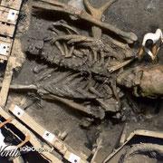 Deze geënsceneerde foto is gemaakt met fotoshop en won de derde prijs op een fotowedstrijd voor bewerkte foto's. De trucage foto wekt de suggestie dat archeologen zojuist een skelet van een reus hebben gevonden, wat natuurlijk nooit heeft plaats gevonden.
