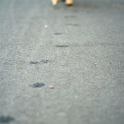 Es soll nicht genügen, dass man Schritte tue, die einst zum Ziele führen, sondern jeder Schritt soll Ziel sein und als Schritt gelten.