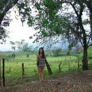 Huasteca landscape