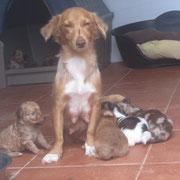 Nubia et les bébés