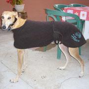Flaco et son nouveau manteau!