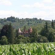 Château du Chalard - Le Chalard (Bujaleuf)