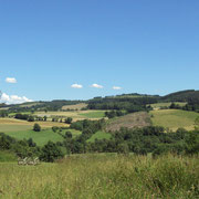Le paysage côté montagne limousine : alternance entre parcelles agricoles, plantations de résineux et parcelles aux résineux coupés - Rempnat (vue depuis les jardins de Mas Maury)