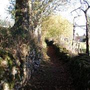 Chemin creux bordé de murets en pierre sèche - Quenouille (Peyrat-le-Château)