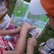 Balade Zoom rivière du Pays d'art et d'histoire : identification de la faune et de la flore appartenant à l'écosystème de la rivière, grâce à un panneau évolutif