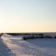 Nur wenige Spuren im Schnee