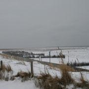der Bereich von Nakedunien mit den dahinte liegenden Salzwiesen