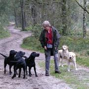 alles Gwendy's Labradors!