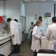 Die Schüler beim Experimentieren.